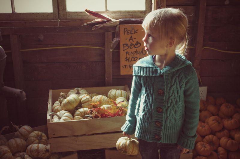 Pumpkins-6925